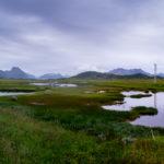 Wide landscapes